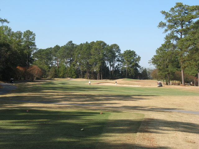 Find Something New At Every Visit To Forest Hills Golf