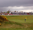 Just nine holes inside a racetrack, Musselburgh Links is the world's oldest golf course.