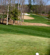 Forest Greens Golf Club features wide landing areas and many tall trees.