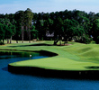 Pete Dye's Valley Course at TPC Sawgrass includes many picturesque holes like the par-3 fifth.