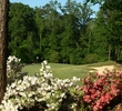 The azaleas on the Azaleas course at Dancing Rabbit Golf Club didn't disappoint in 2010.