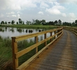 The interest really starts to build by the time you get to the par-3 sixth hole at Gray Plantation Golf Club.