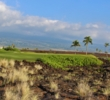 The 13th hole at Kohanaiki plays over lava rock to a sloping green.