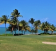 The 18th hole at Bahia Beach Resort & Golf Club finishes near the shore.