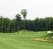 The 10th hole at Potomac Shores Golf Club is a downhill par 5 and features two trees and a split fairway near the green.