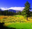 Although it's in the mountains, most of the Bill Coore-Ben Crenshaw-designed Clear Creek Tahoe Golf Club plays on level terrain more akin to links golf.