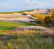 Even the deer like Tom Doak's Blue Course at Streamsong near Fort Meade, Florida.