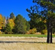 The Meadows, one of four golf courses at Sunriver Resort, certainly holds its own in the scenery department.