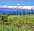 The Plantation Course at Kapalua, designed by Bill Coore & Ben Crenshaw, is located on Maui's jungly north shore.