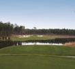 The North Course is one of two Tom Fazio designs at Forest Creek Golf Club.