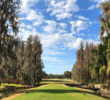 With Spanish-moss covered cypress trees lining the fairway, the original Saddlebrook Course at Saddlebrook Resort has a unique look.