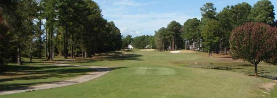 Fox at River Oaks Golf Plantation: #6