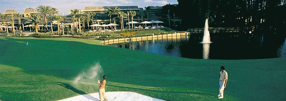 Saddlebrook Golf & Tennis Resort
