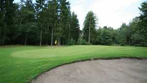 British Army GC Sennelager - Forest Pine: #7