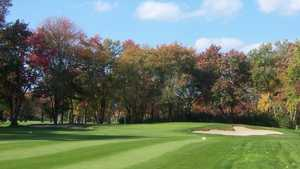 Brookmeadow CC: #17