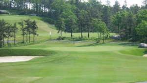 Waverly Oaks Golf Club - Challenger: #8