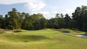Kingwood CC - Forest
