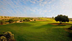 Arabian Ranches - 13th green