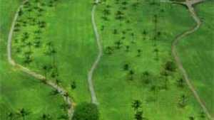 Ke'alohi GC - Aerial View