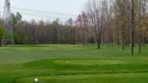East at Rogues Roost GCC: #1