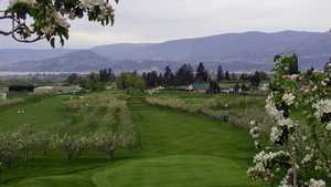 McCulloch Orchard Greens GC