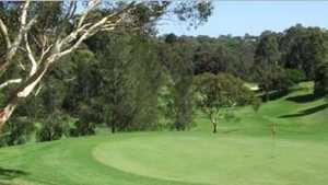 Lane Cove CC: #11