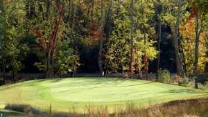 Williams Creek GC: #9