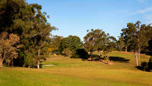 Pine Rivers GC: #6