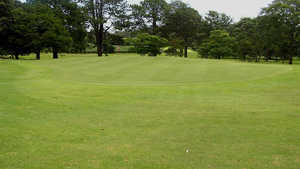 Tamborine Mountain GC: #4