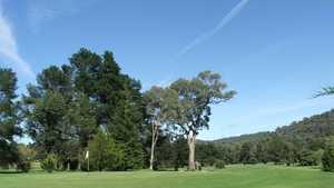 Myrtleford GC: #8
