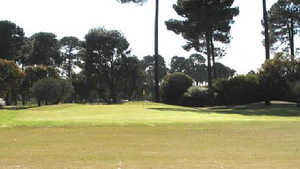 Collier Park GC - Pines: #1
