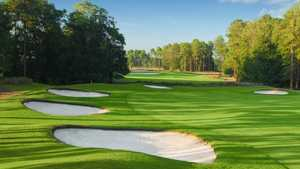 Wild Wing Plantation - Hummingbird: #7