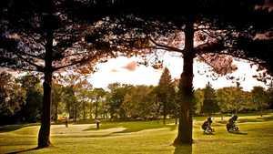 Colville Park GC: #7