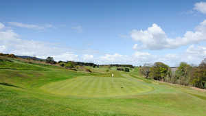 Carrickmines GC: #8