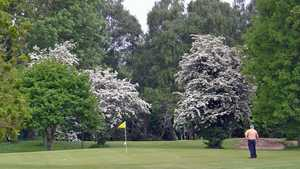 Padeswood and Buckley GC: #10
