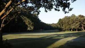 Royal Ashdown Forest GC - West: #18