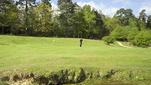 Bramshaw GC - Forest: #3
