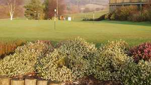 South Herefordshire GC: Practice area