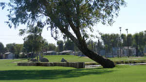 Desert Trail RV Resort & GC