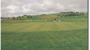 Quail Valley Putting Green