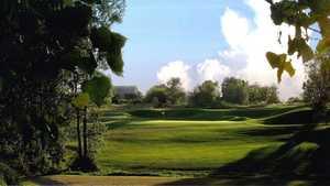 National Golf Links: #11