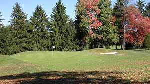 Pines CC: #7