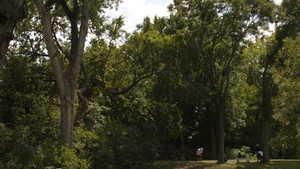 Butler Park GC