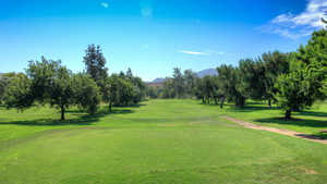 Singing Hills Golf Resort at Sycuan - Pine Glen: #10