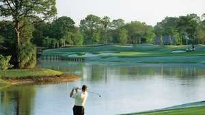Palmetto Pines GC