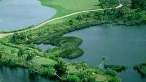 Palmetto Pines GC: Aerial view