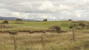 Dooks Golf Club: #11