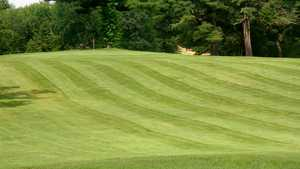 Longhi's Golf: #2