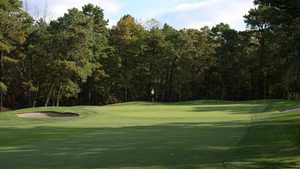 White at Little Mill CC: #3