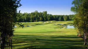 Cardinal GC - RedCrest: #1